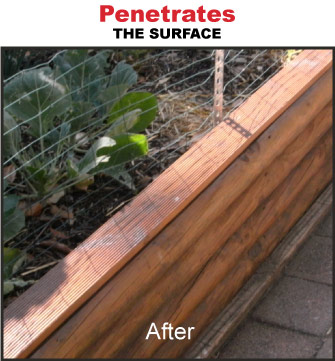 Sealer penetrates the timber surface restoring finish